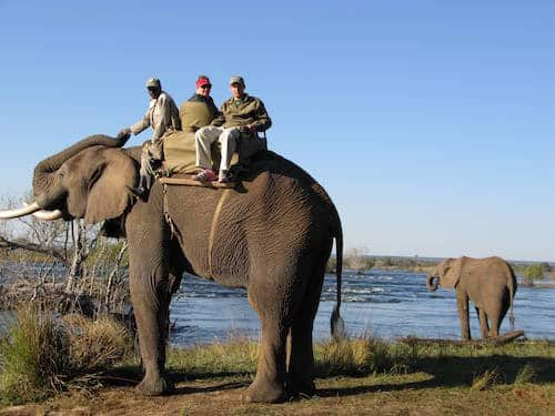 a family on their African safari, luxury family vacations planned by Southern Travel Agency Augusta, GA
