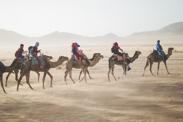 Group travel tour through Morocco on camels, custom tailored group vacations by Southern Travel Agency Augusta, GA