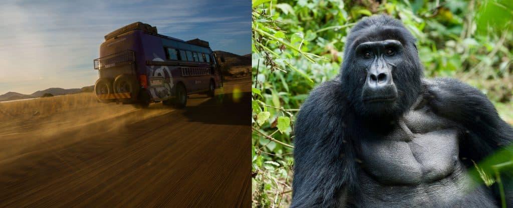 Gorilla Uganda Overland Truck
