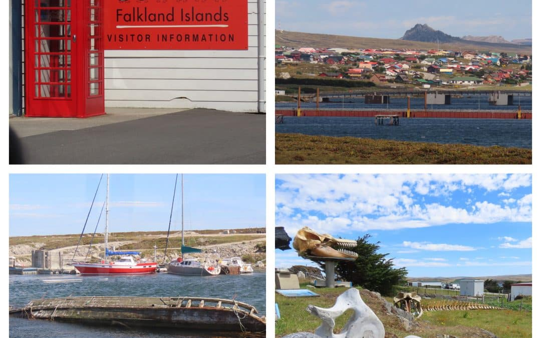 "Luxury Antarctica Cruise Blog – Chapter 3 The Falklands and ""At Sea"""