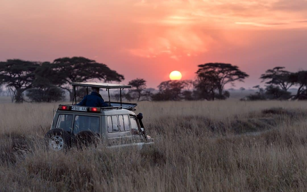 Safari sunset, how to pack for an African safari trip